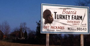 Bosco's Turkey Farm